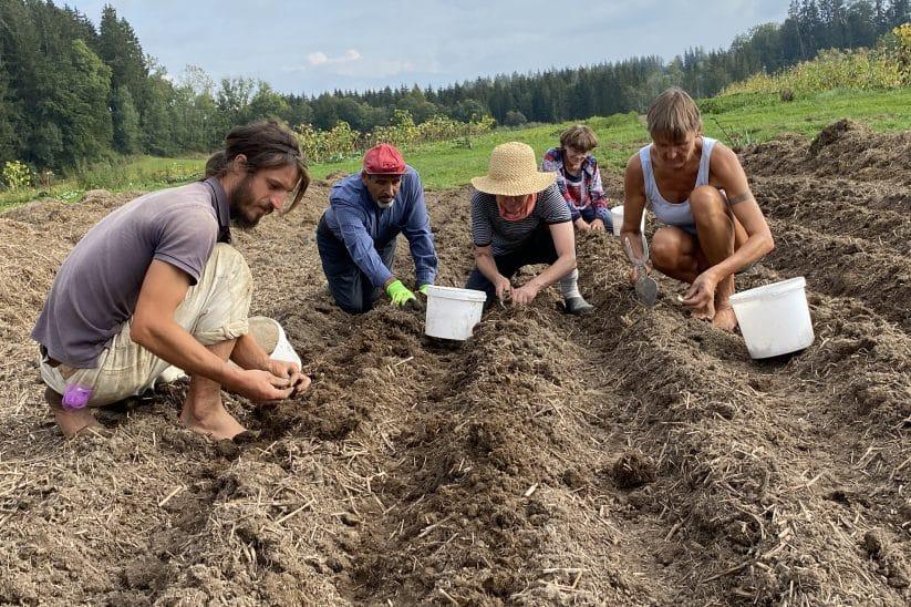 Solawi Solidarische Landwirtschaft